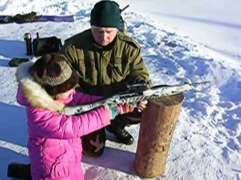 MP-161K Self-loading Russian Carbine .22LR