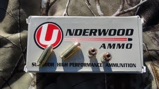 AMMO TEST_  10mm Underwood 200 gr Hornady XTP JHP