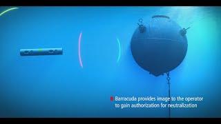 Raytheon - Anti-Advanced SAM Missile Combo : MALD, JSOW & HARM Combat Simulation [720p]