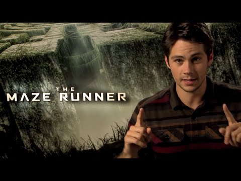 The Maze Runner | #AmazingRun HD