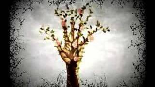 Watch Au4 The Tree That Lived And Died Right Before My Eyes video