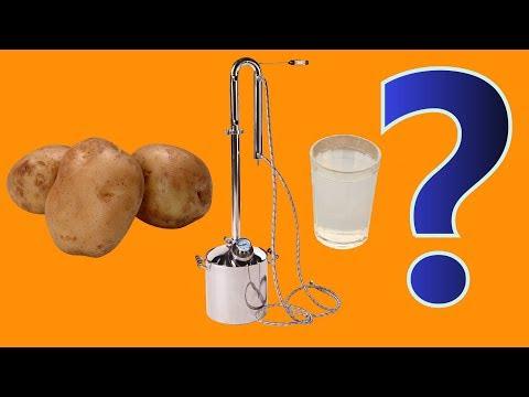 Получится ли САМОГОН из картошки на КОДЗИ?