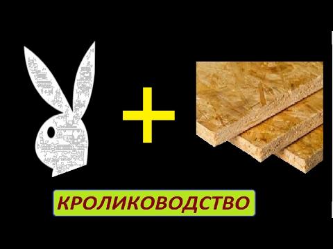 Кролики И ОСБ плита