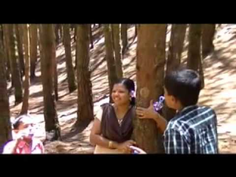MUNNAR ullasayatra [part 2] 'Pine Tree Forest'
