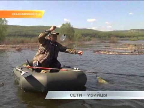 Рейд Рыбнадзора Самарской области
