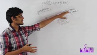 01. Gymnosperms & Angiosperms | নগ্নবীজী ও আবৃতবীজী উদ্ভিদ | OnnoRokom Pathshala