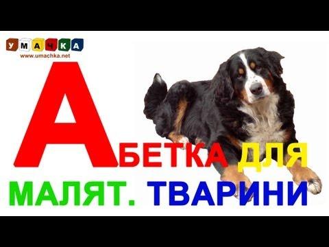 """Абетка для дітей """"Тварини"""" - Вчимо український алфавіт"""