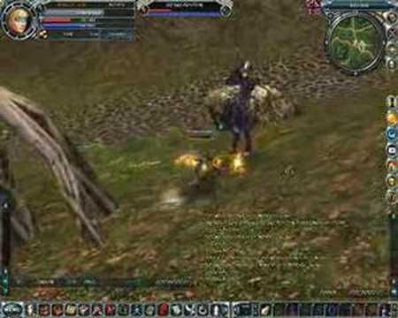 Mag Online Gameplay R.o.h.a.n Online Elf / Mag