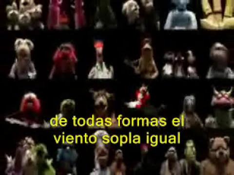Bohemian Rapsody - The Muppets - con subs q se entienden .__.
