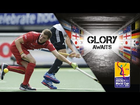 Belgium vs Germany - Men's Rabobank Hockey World Cup 2014 Hague 6th/5th Place [15/6/2014]