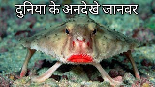 Top 7 Antique Creatures Of The World.[HINDI]
