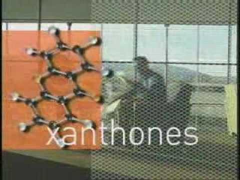 XanGo Joe Morton's Story