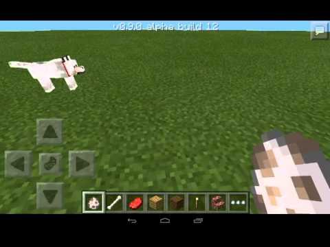 Как приручить животных в Minecraft: действенные советы ...