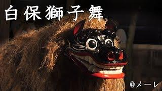 石垣市白保の旧盆行事「獅子舞」