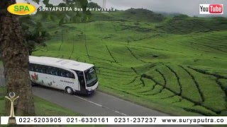 DOWNLOAD VIDEO BUS PARIWISATA