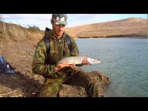 рыбалка в новом егорлыке