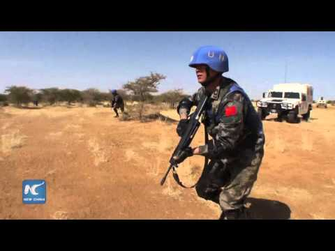 UN official:Chinese contribution essential to Mali peace