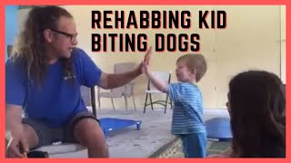 Dog bites kids, how to rehab aggressive dog training