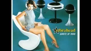 Watch Zebrahead Waste Of Mind video
