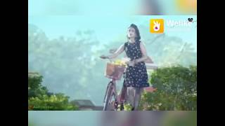 Main Dekhu Teri Photo Sau Sau Vaar Kudde | Luka Chuppi|Full Screen WhatsApp Status Video 2019