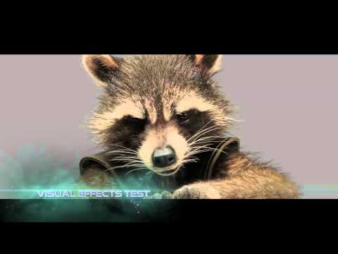 Marvel's Guardians of the Galaxy | Meet Rocket Raccoon | In Cinemas August 7