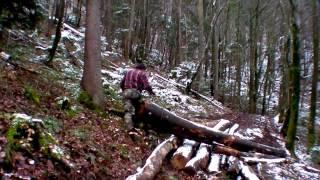 Play dans le monde de portable winchclip 3comment - Tire fort forestier ...
