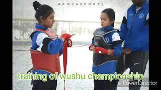 Wushu training in rajasthan
