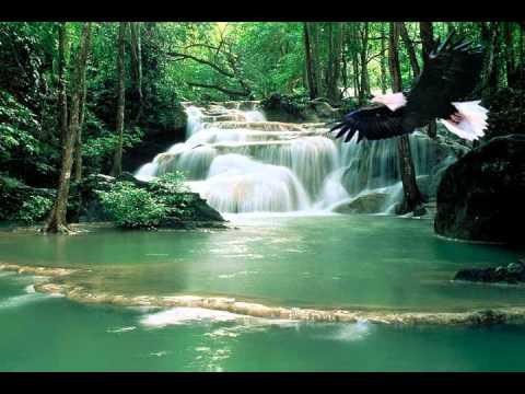 Musica Cristiana-nena Leal-el Vuelo Del Aguila.wmv video