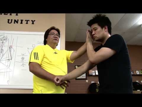 Gary Lam Wing Chun Seminar 2013: Pak Sau Demonstration Part 1 Image 1