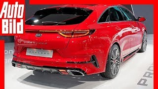 Kia ProCeed (Paris 2018) Kia-Chef-Designer im Interview
