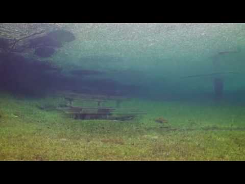 Beautiful Film of Scuba Diving in a Newly Flooded Meadow.