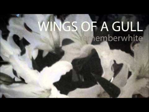 WINGS OF A GULL (Traditional Whaling Shanty) by Remember White / sailing sea ocean whale whales