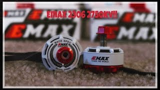 Testing New 2306 Emax Red Bottoms 2750kv!!!