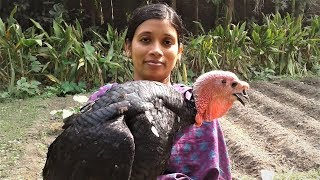 Turkey Curry Recipe | How To Cook Turkey | Village Style Cooking By Street Village Food