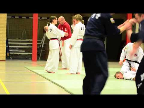 Hapkido Training op Urk Image 1