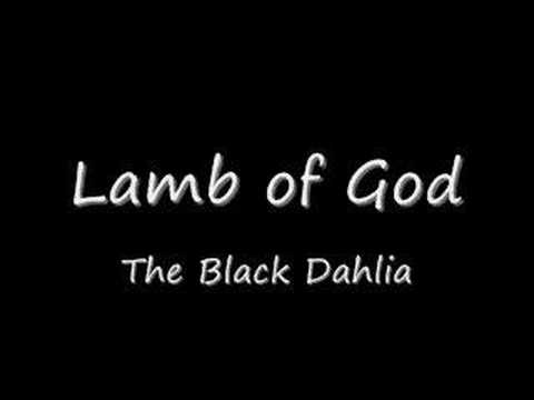 Lamb Of God - The Black Dahlia