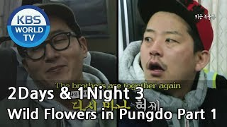 2 Days and 1 Night - Season 3 : Wild Flowers in Pungdo Part 1 (2014.04.27)
