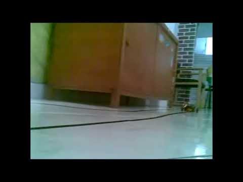 robot seguidor de lineas velocista