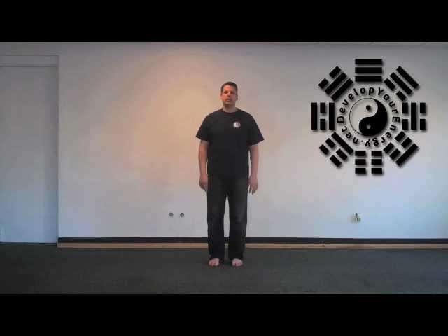 Empty Force - Ling Kong Jing | Qigong Exercises | Sifu Dan Ferrera