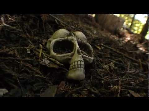 Battle For The Alien Skull (Bryce)
