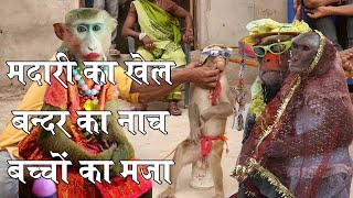 मदारी का खेल बंदर बंदरिया की शादी Funny Monkey Video #Rustamehind