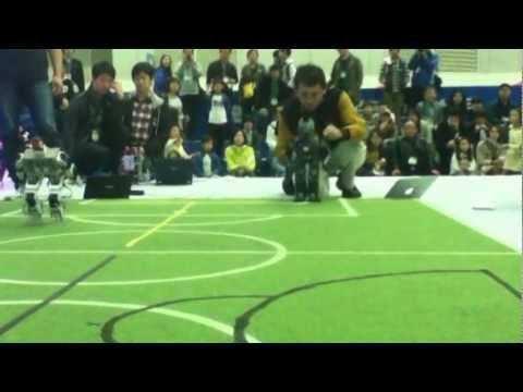 International Robotic Contest