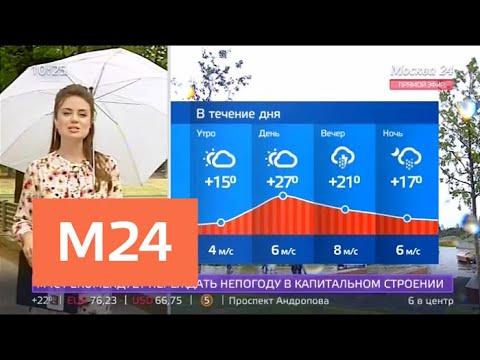 """""""Утро"""": атмосферное давление будет в норме в Москве 15 августа - Москва 24"""
