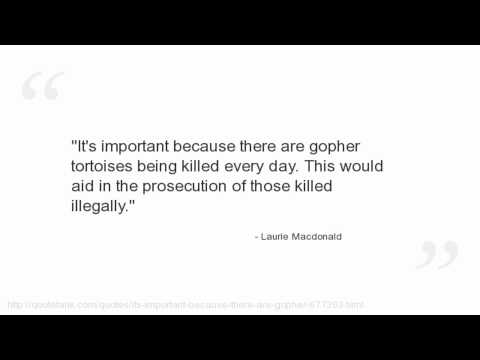 Laurie Macdonald Quotes