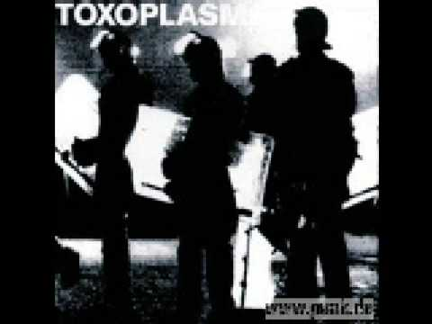 Toxoplasma - Weltverbesserer