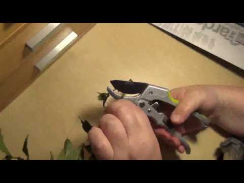 Power Drive Ratchet Anvil Hand Pruning Shears Reviews