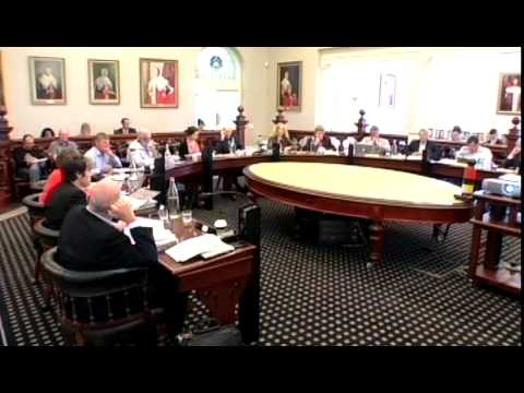 Dunedin City Council - Council Meeting - January 21 2015 - Part 1