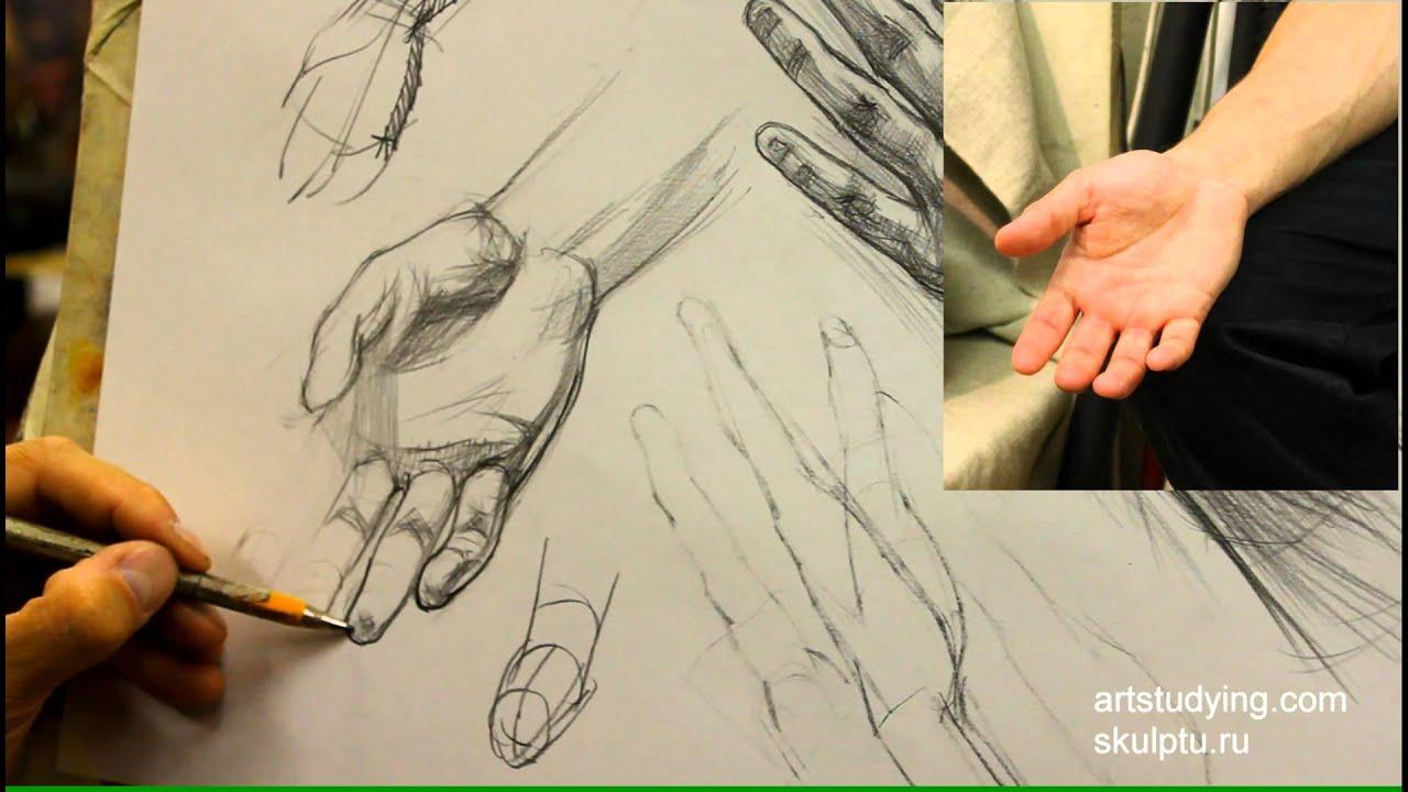 Учится рисовать онлайн карандаш