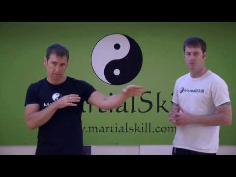 7 Star Mantis Kung Fu: Basic Kung Fu Punching Techniques Image 1