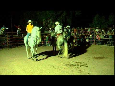 Caballos Rancho El Topo en fiestas campo 30